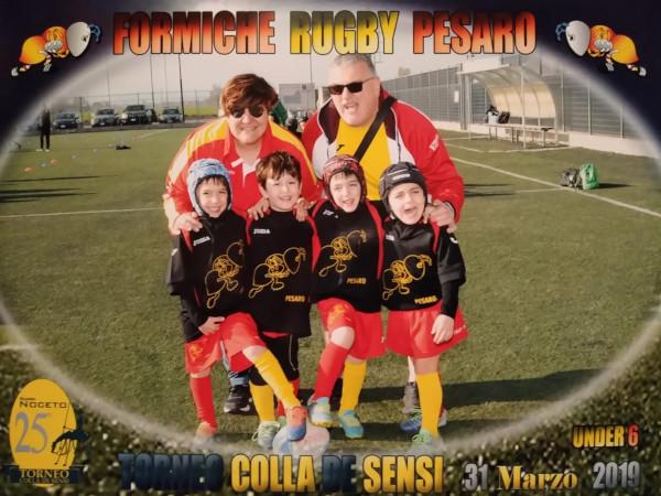Calendario Tornei Minirugby 2020.Formiche Rugby Pesaro